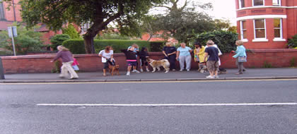 Fast Track Dog Training - class
